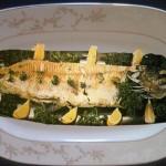 Tereyağlı Turna Balığı